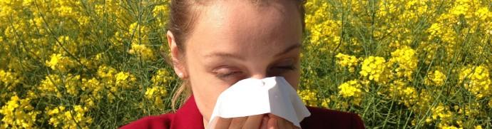Traitement naturel pour les allergies illustration
